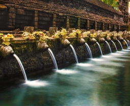 Exotic Bali Tours
